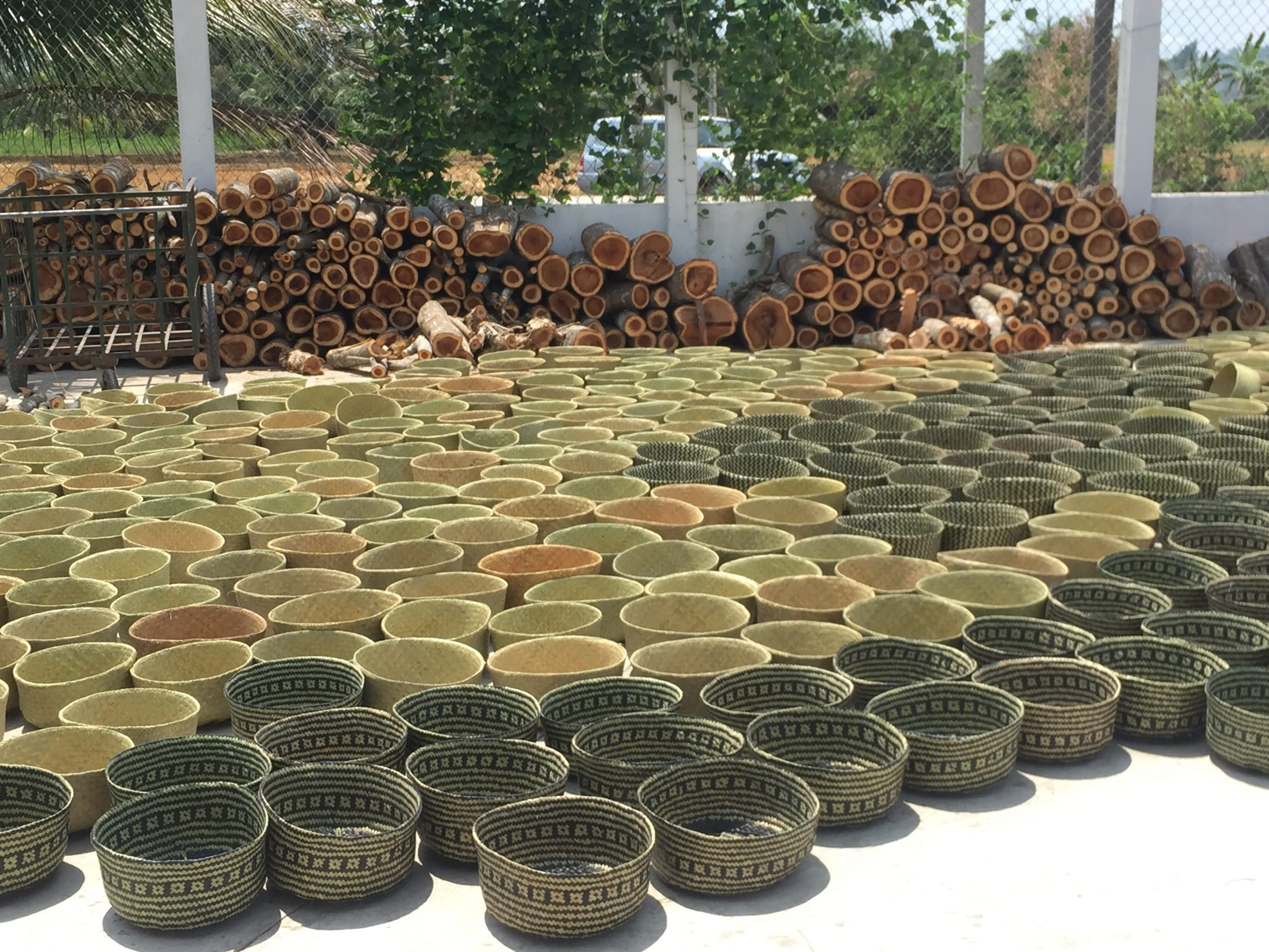Các sản phẩm quà tặng doanh nghiệp từ cỏ bàng ngày càng được ưa chuộng vì đảm bảo sức khỏe và có độ bền cao